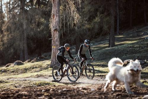Abbigliamento da ciclismo Q36.5