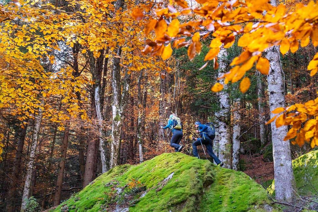 Bosco in autunno - Giacche termiche Karpos