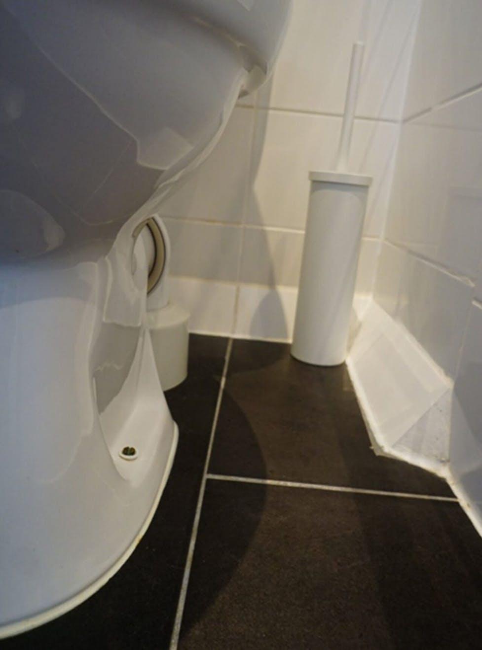 Reinigungstipps fürs Bad vom Profi  WC Frisch