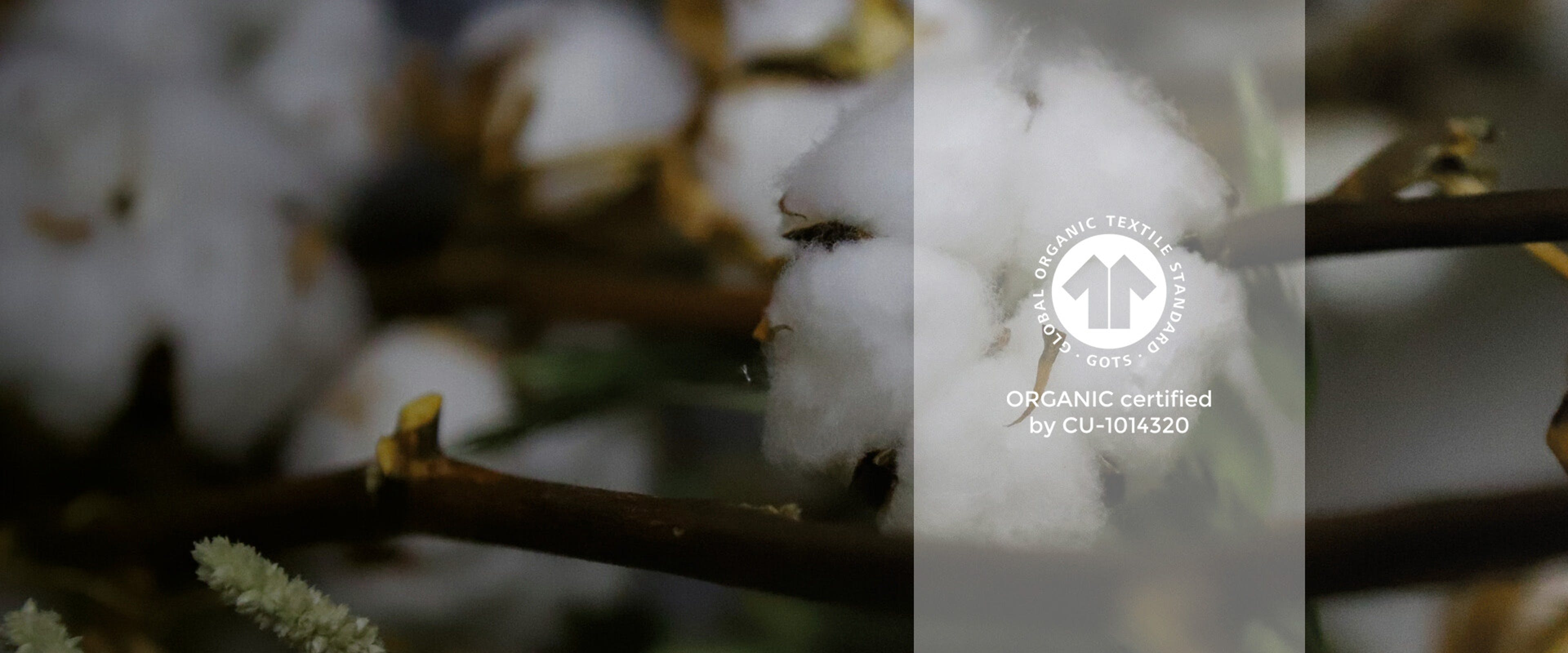 GOTS-zertifizierte Baumwolle bei ESSENZA HOME