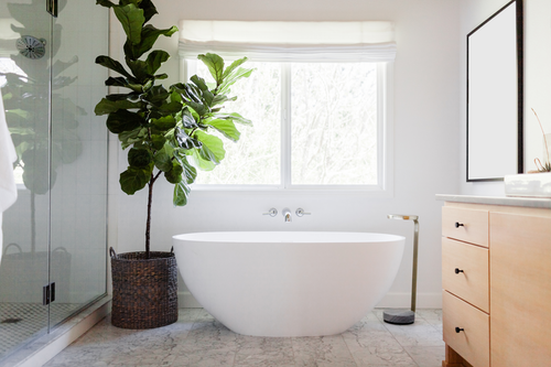 Modern bathroom with large window, oval bathtub, glass shower doors on left, leafy plant, square mirror, drawer unit