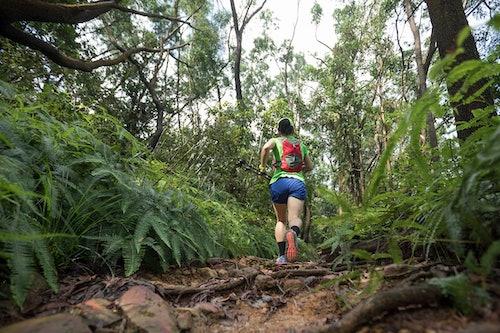 Dschungel Marathon