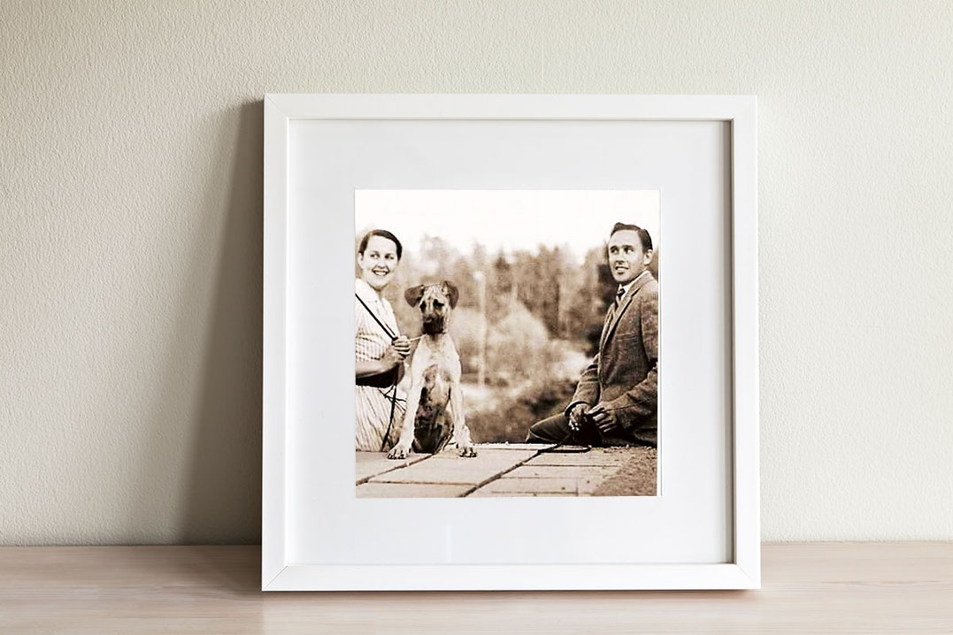 Magnusson Hundefutter - Familienunternehmen mit Tradition