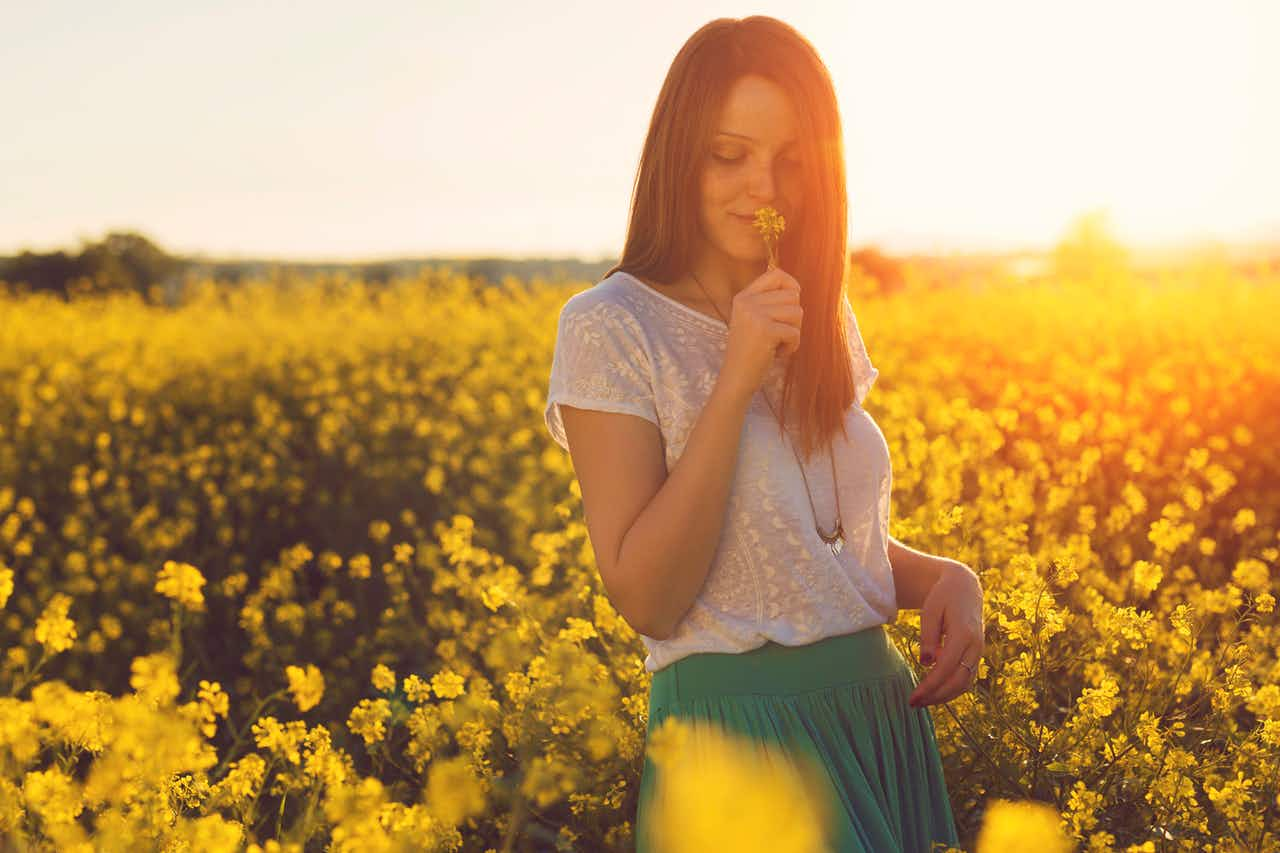 A woman standing in a field of yellow flowers at sunset smelling and embracing the natural beauty of a flower