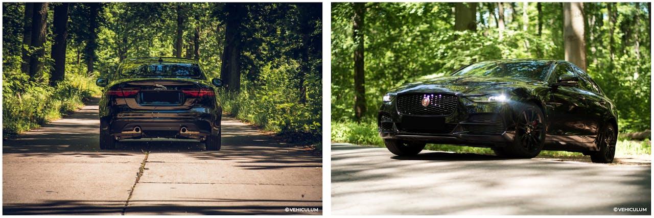 Jaguar XE Fahraufnahmen im Wald