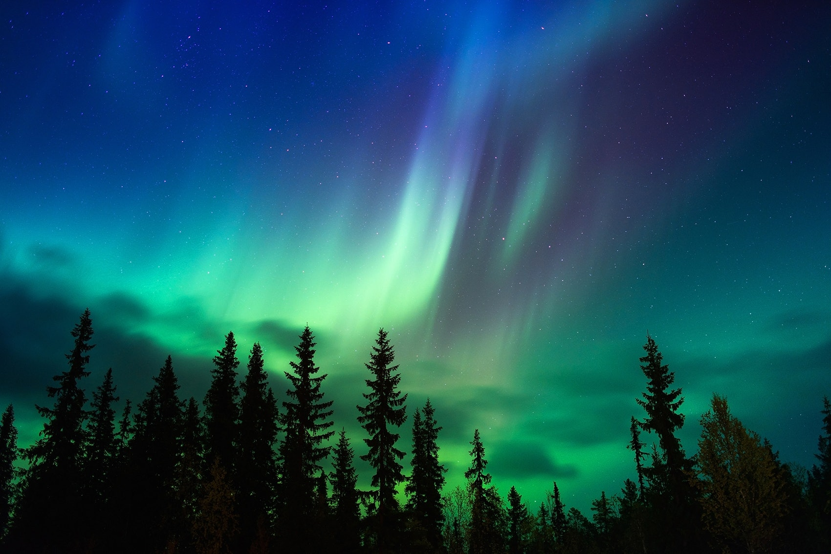 Enlightenment Of Night by Jonna Jinton