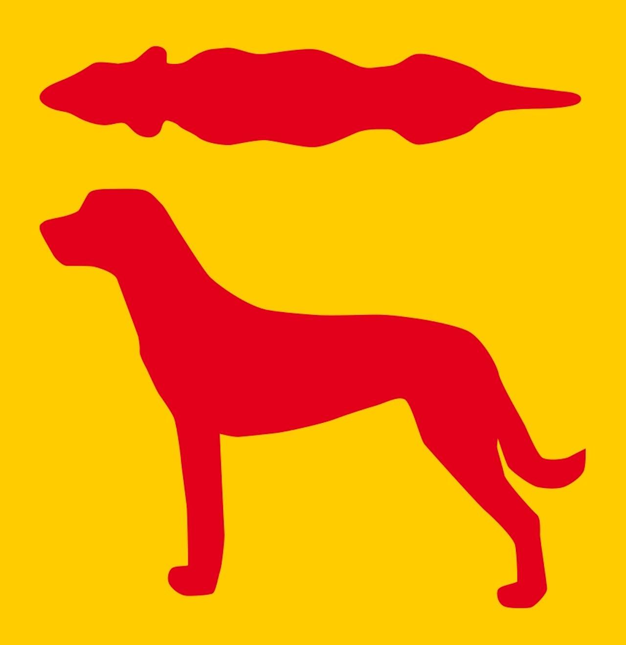 """Darstellung """"zu dünn"""" - Übergewicht bei Hunden"""