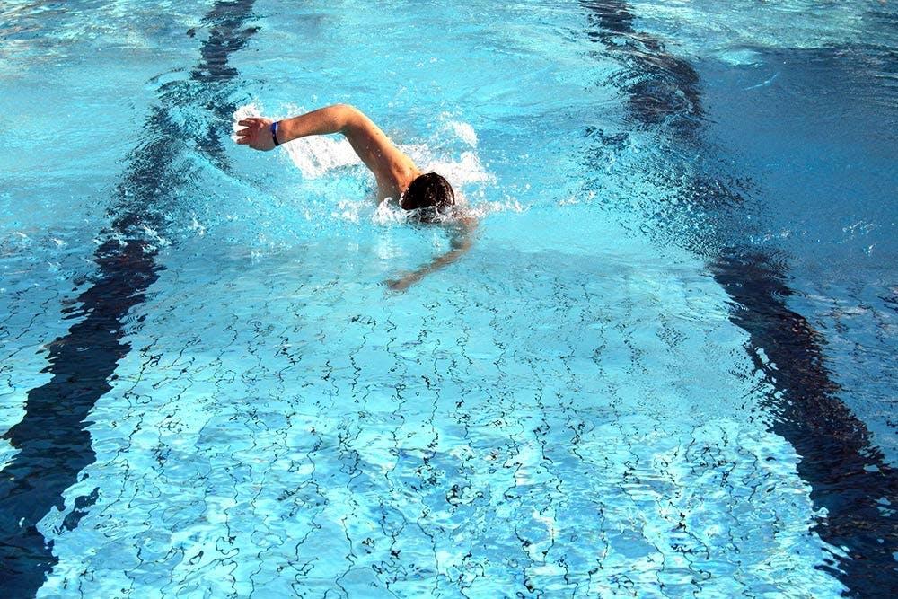 Schwimmer beim Kraulen