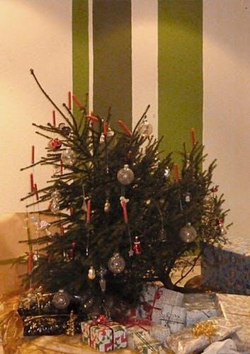 Umgekippter Weihnachtsbaum