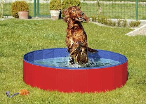 Karlie - Hundezubehör - Doggy Pool Hunde Swimmingpool