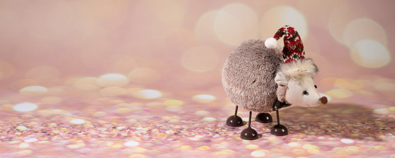 Christmas decorations online now at kilkenny shop