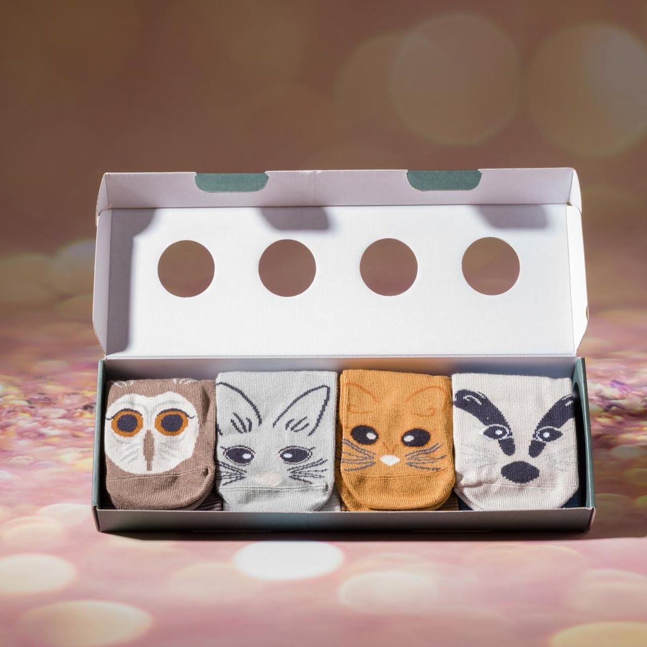 Seasalt Women's Sailor Socks Box Gift Set