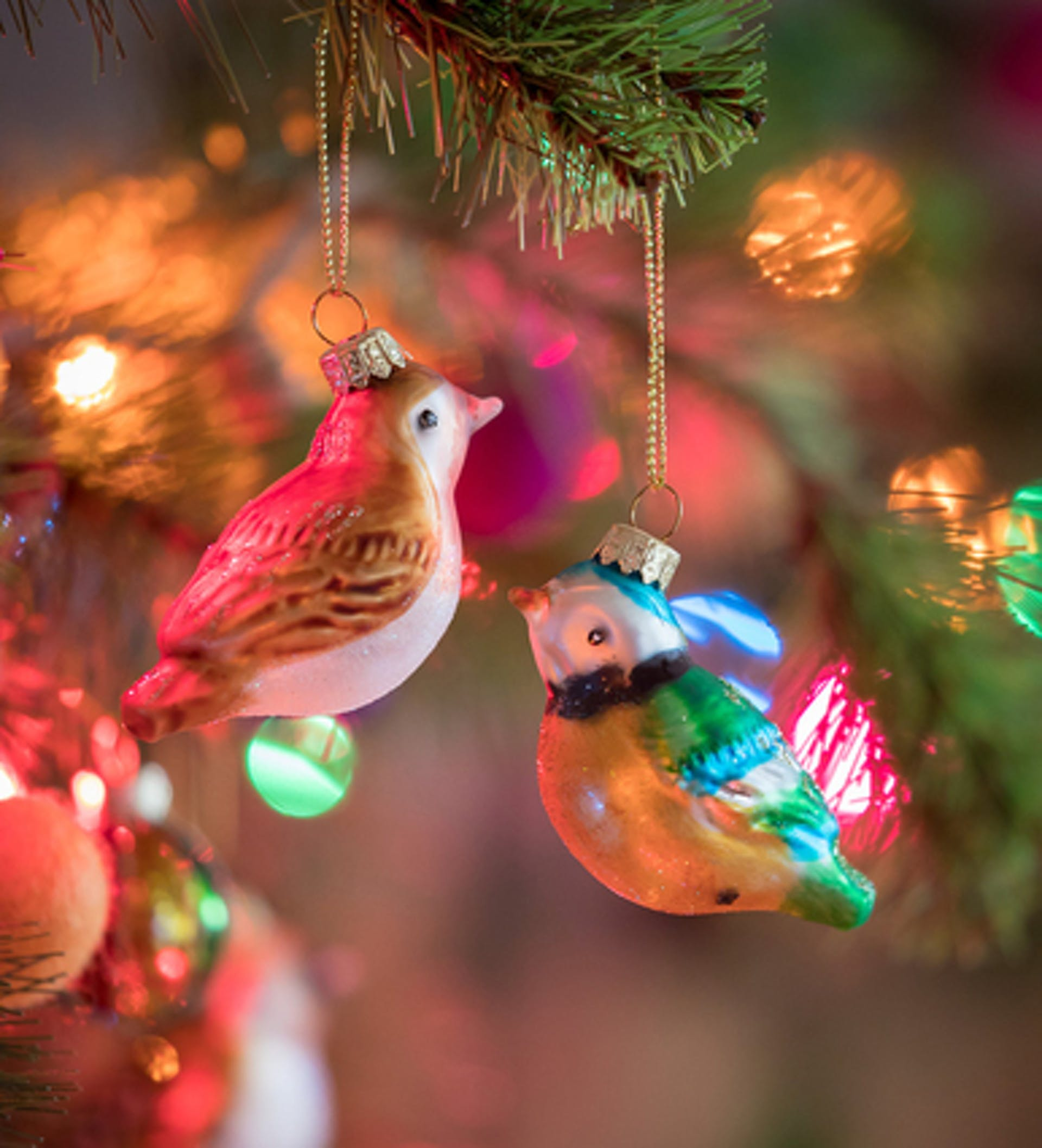 Colourful Bird Decorations