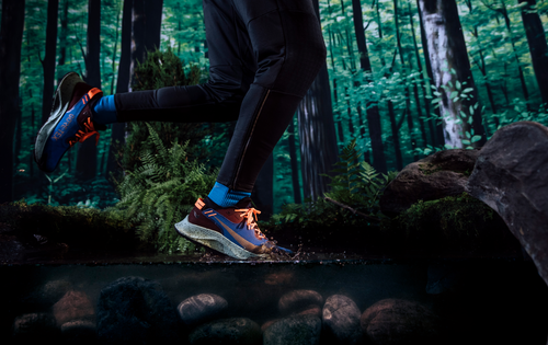 Nike Pegasus Trail 2 GORE-TEX - uomo