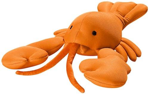 Hunter - Hundespielzeug - Aqua Toys