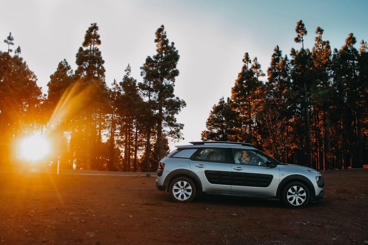 Citroen Cactus vor Wald mit untergehender Sonne. Leasing bei VEHICULUM