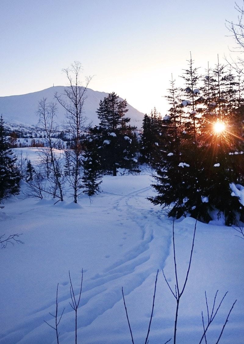 Skifahren-Norwegen-Gaustatoppen