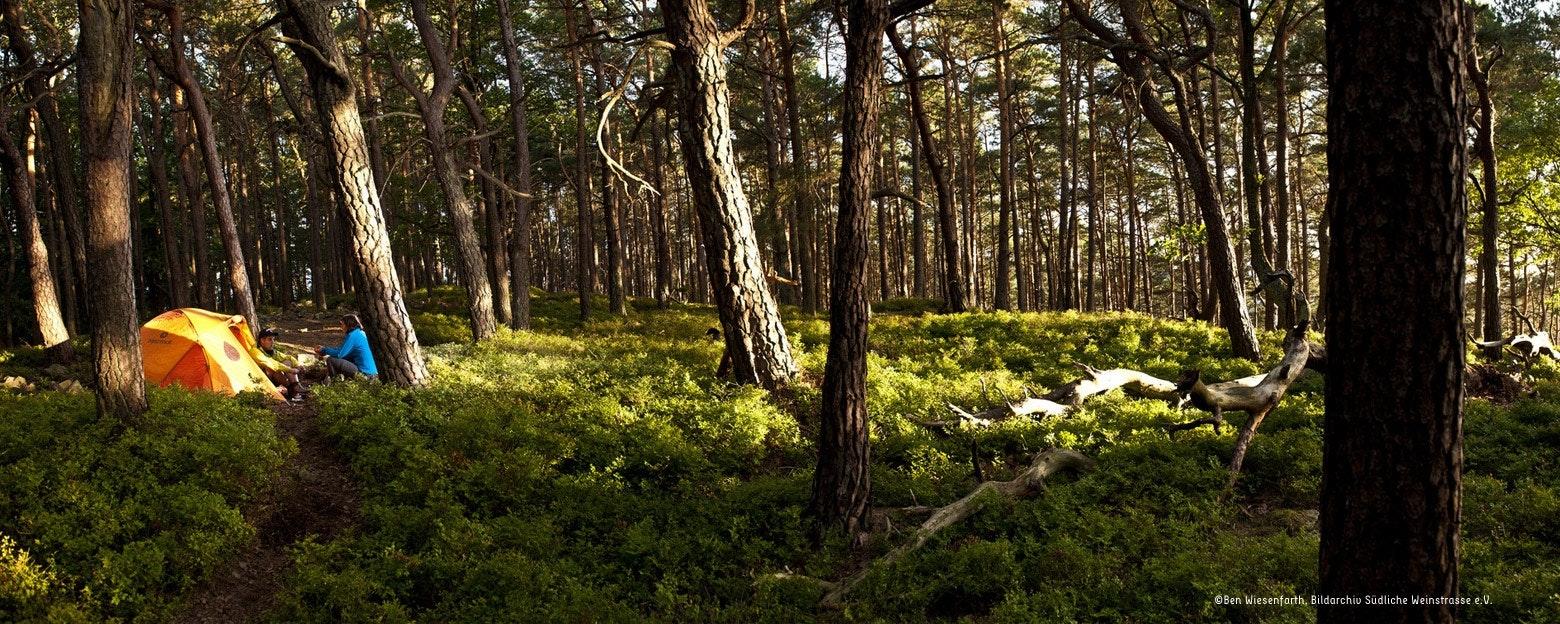 Trekkingcamps – mit Zelt wandern