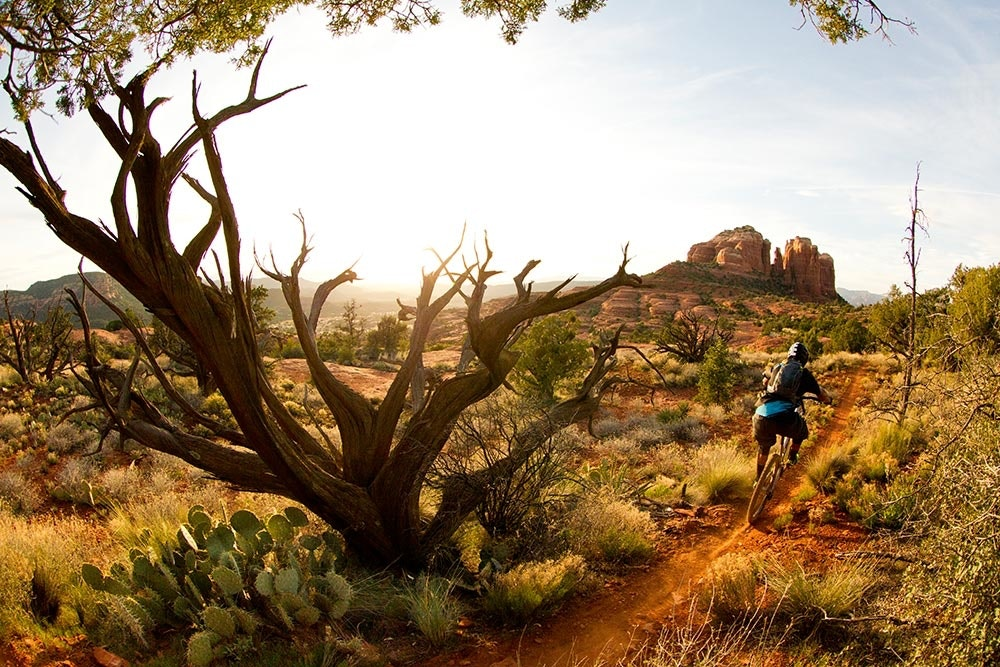 Mountainbiker in den USA