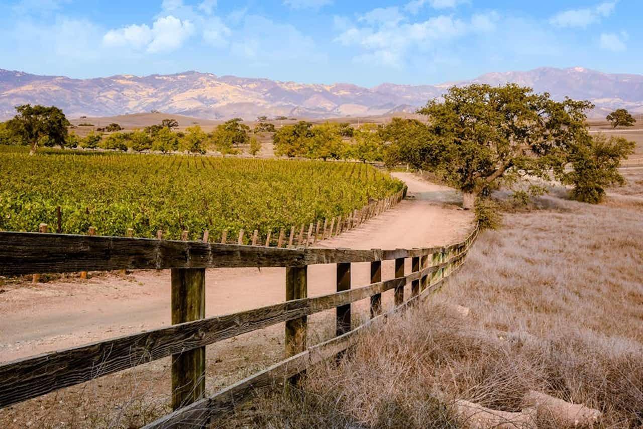Fahrradfahren im Santa Ynez Valley