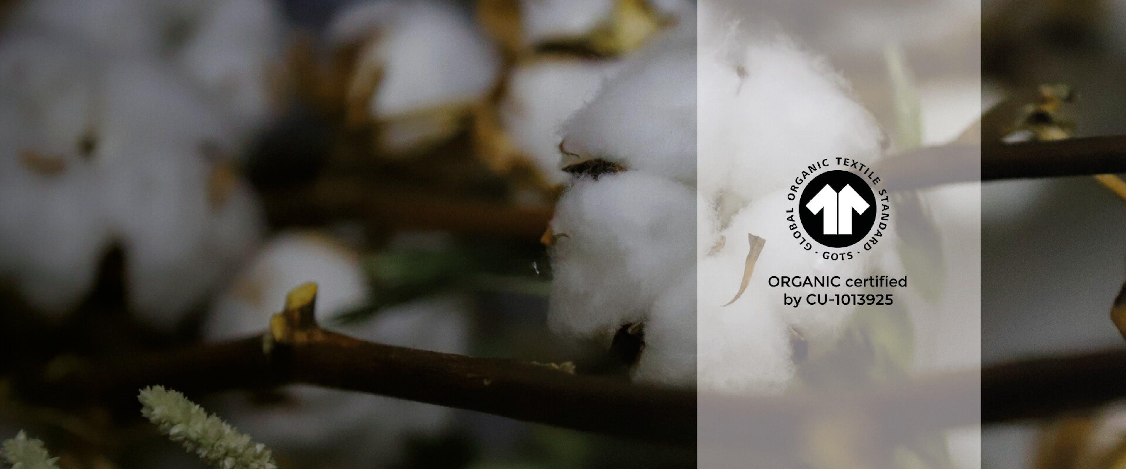 GOTS-certified organic cotton