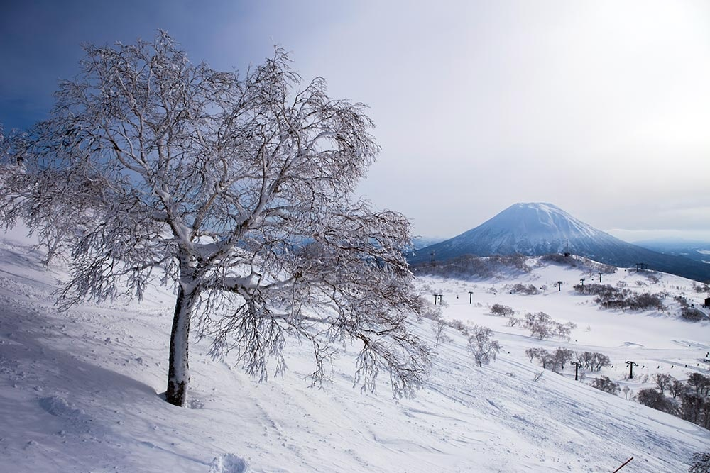 Skigebiet Niseko in Japan