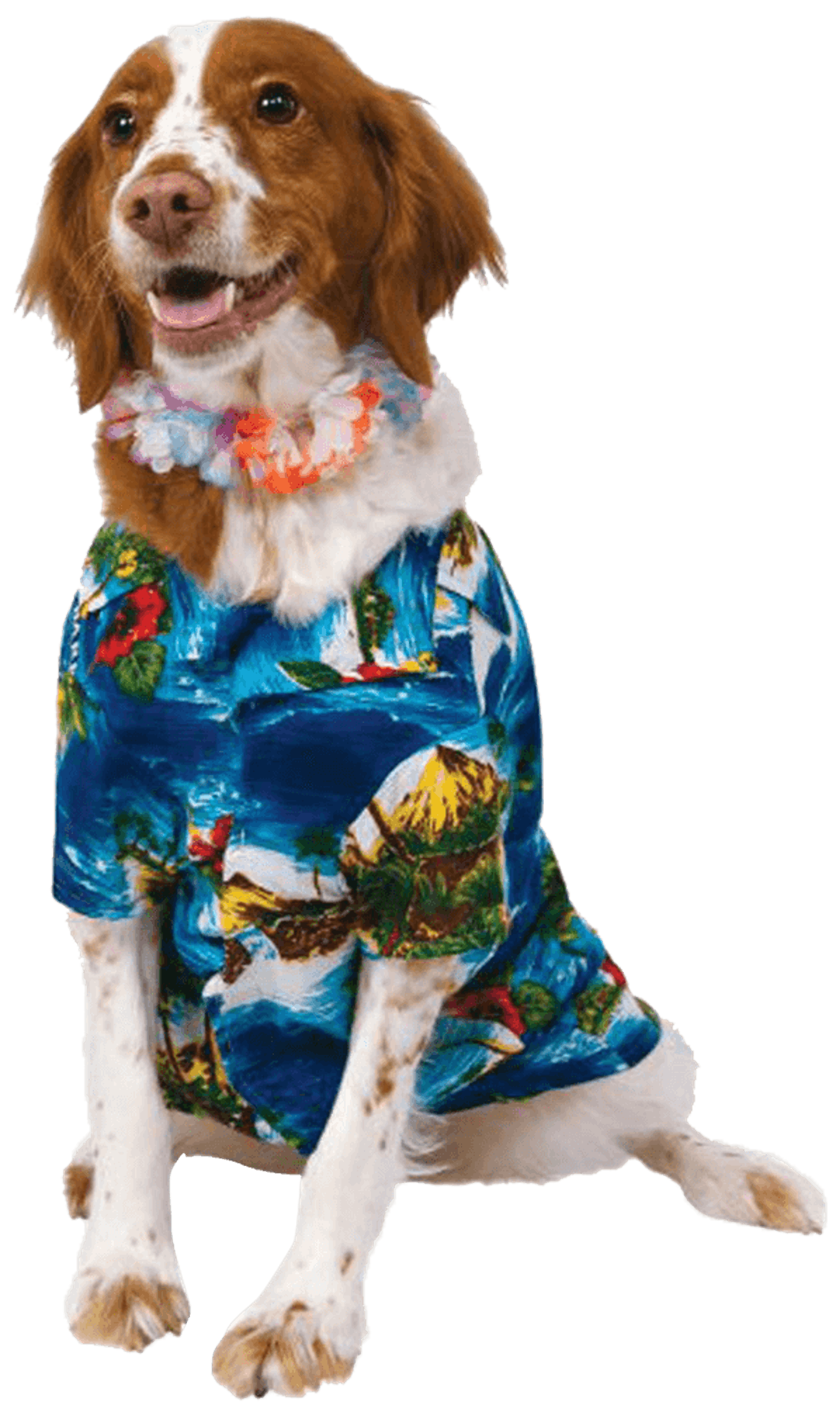 Howliday Hound Dog Costume