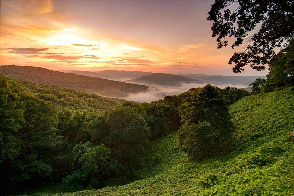 Ozark National Park