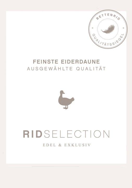 Feinste Eiderdaunen-Qualität von Rid Selection