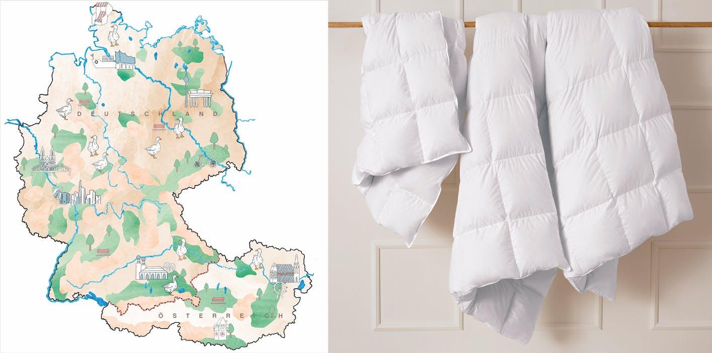 Nachhaltig schlafen: Qualitätsdaunen aus regionalen Traditionsbetrieben.