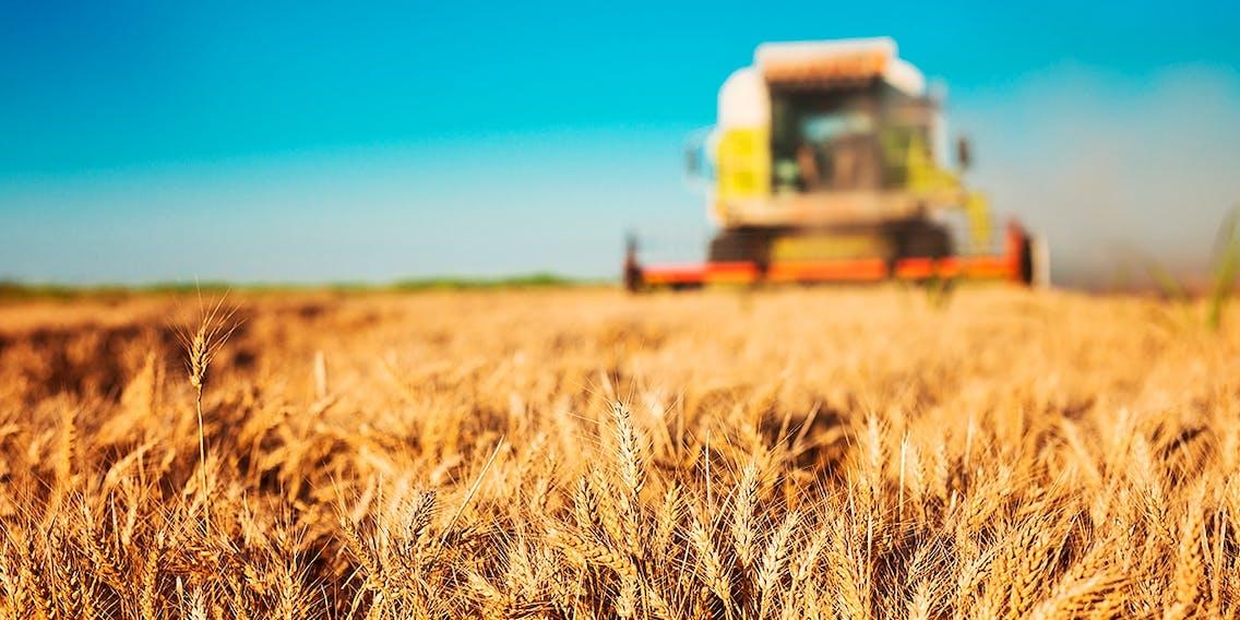 Nachhaltige Landwirtschaft in Schweden