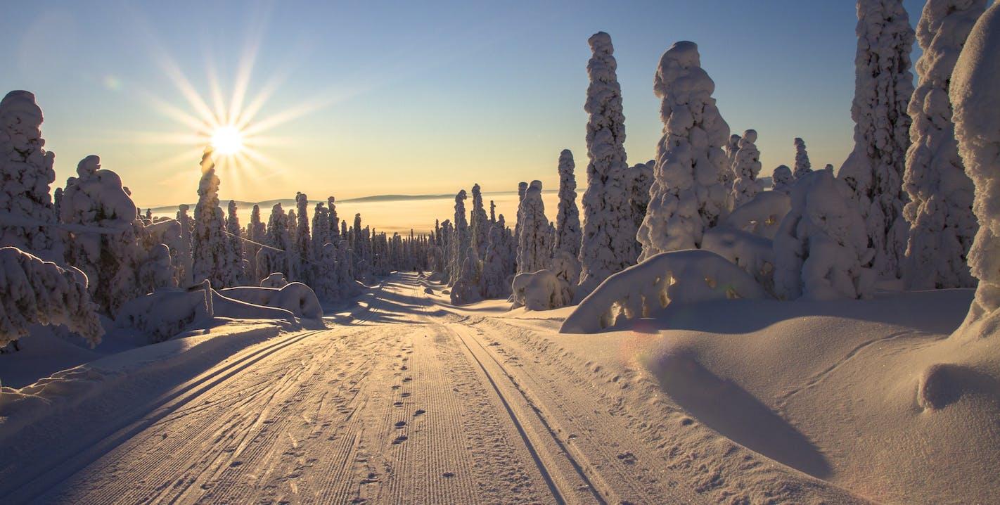 Romantische Winterlandschaft beim Rodeln