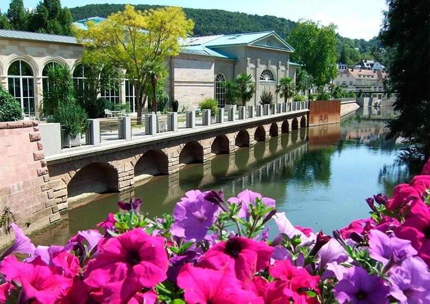 Pinke und lila Blumen vorm einem Fluss, daneben eine Brücke und ein großes Gebäude mit vielen Fenstern.