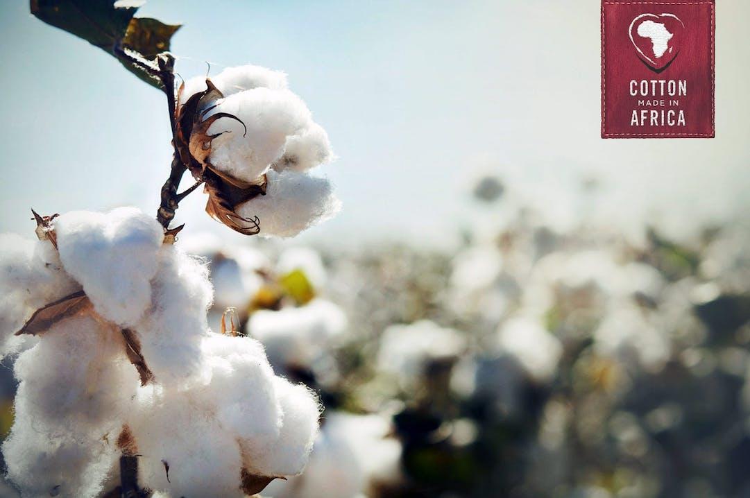 Nachhaltiger Baumwollanbau in Afrika