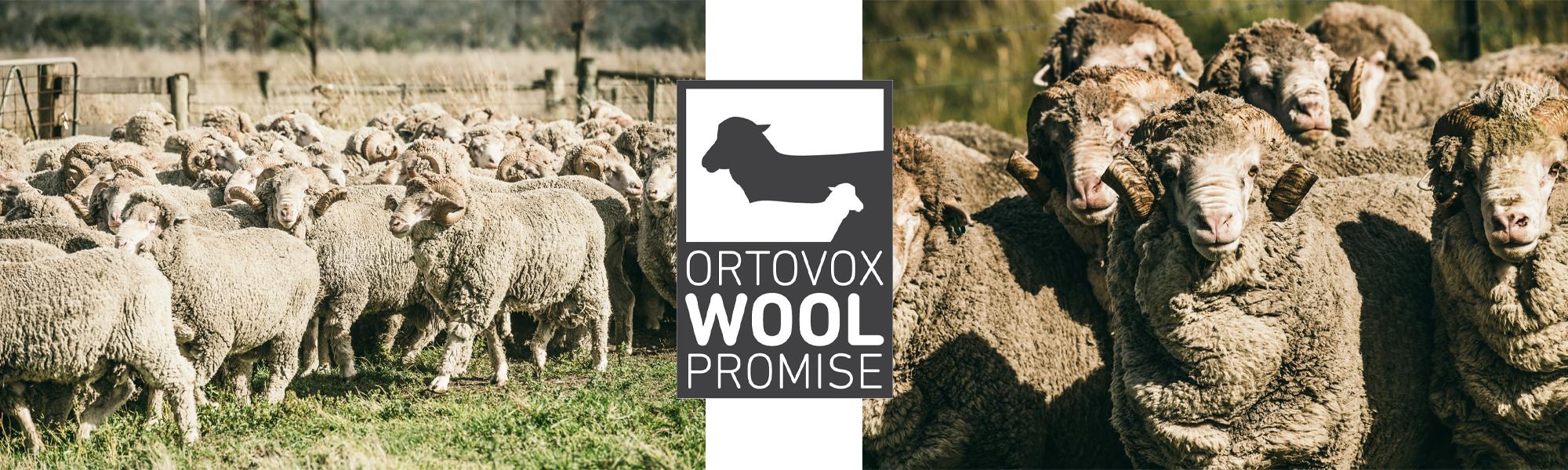Ortovox Wool Promise