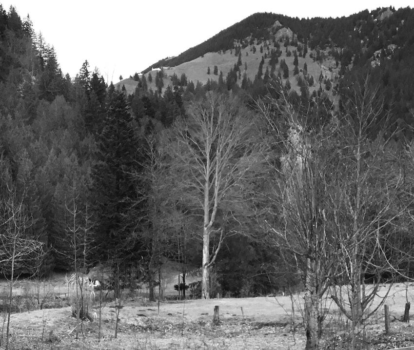 Wanderung Hochries im Chiemgau
