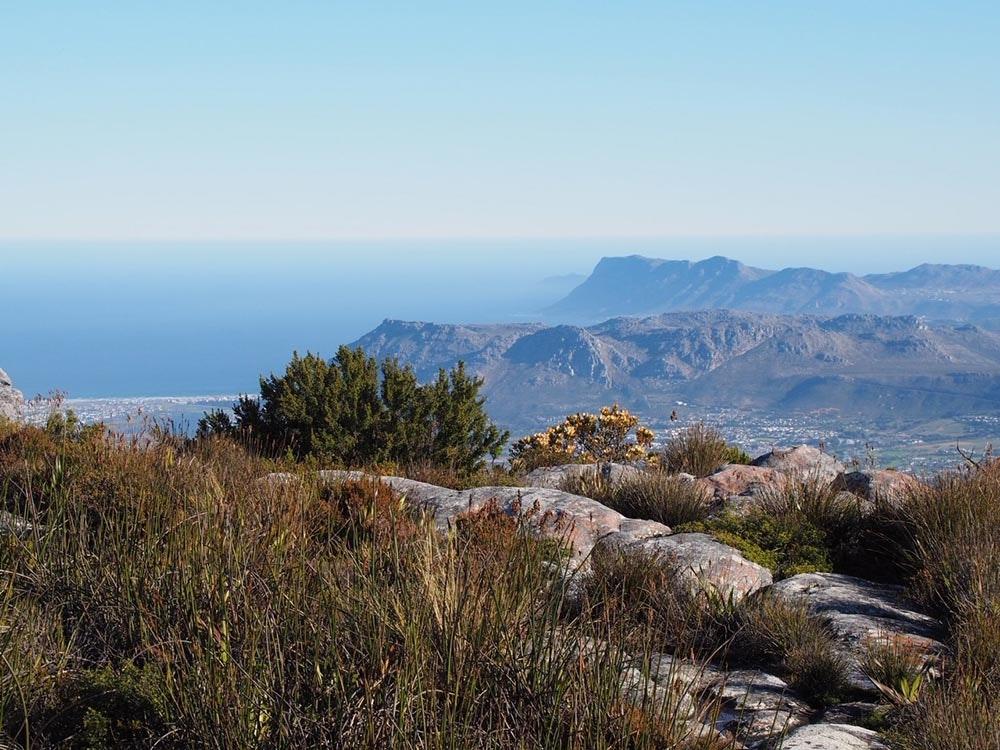 Tafelberg Blick