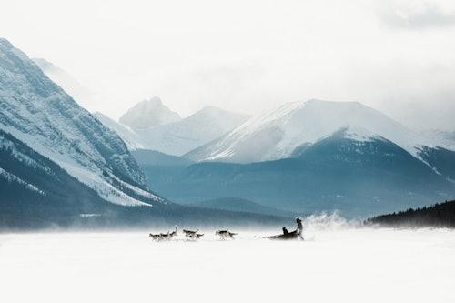 Husky Schlittenfahrt in Kanada