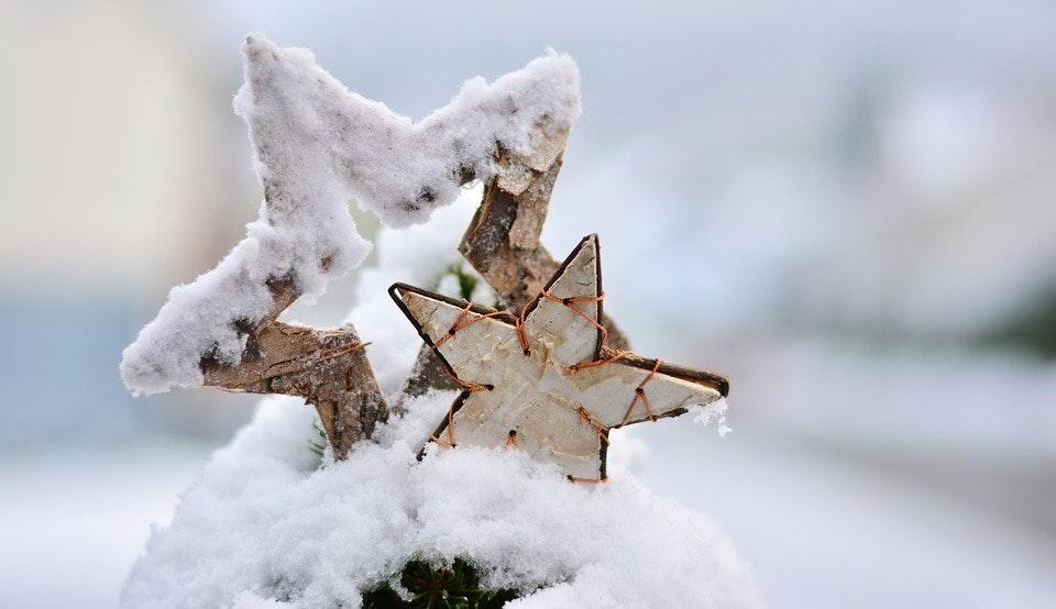 Detailaufnahmen im Schnee